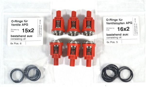 Rep-Satz O-Ringe für Ventile APG 41748
